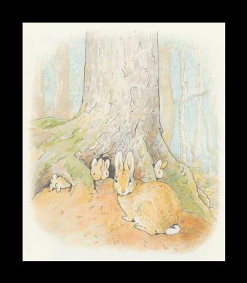 Бенджамин и Кролик Питер Банни. Сказка о кролике Питере 30