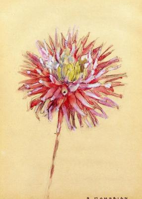 Piet Mondrian. Dahlia