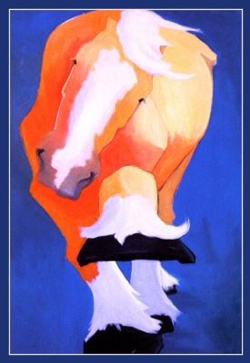 Кэти Аптон. Лошадь