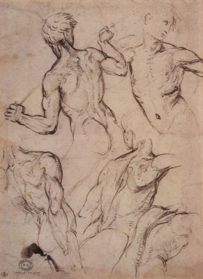 Raphael Santi. Sketches of naked fighting boys