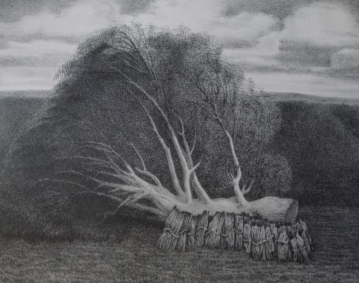 Nikolay Stepanovich Makushkin. Sawn tree