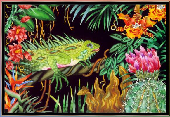 Джуди Вайс. Джуди Вайс. Тропический лес для детей 11