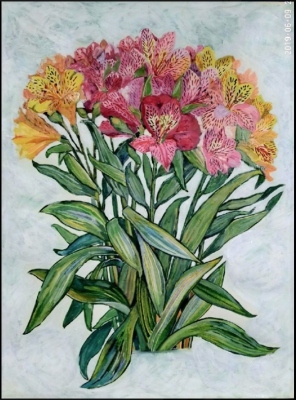 Lilia Georgievna Evsyukova. Astromeria (Peruvian Lily)