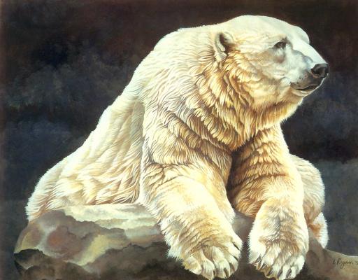 Лаура Риган. Полярный медведь