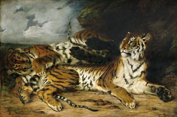 Молодой тигр играет со своей матерью