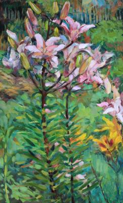 Мария Алексеевна Ширяева. Lilies from the garden