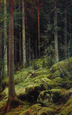 Ivan Ivanovich Shishkin. The jungle