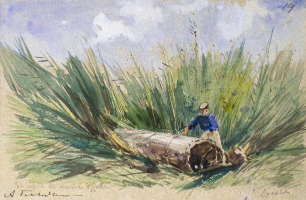 Alexey Petrovich Bogolyubov. Monitor tube in brailovskiy reeds