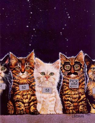 Валь и Рон Линдхан. Коты