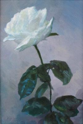 Alexander Ivanovich Vlasyuk. White rose