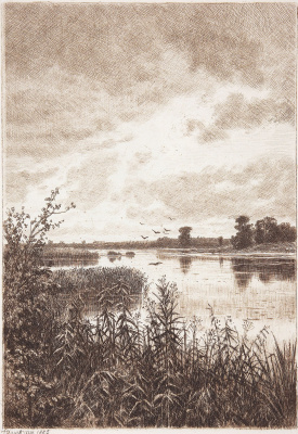 Ivan Ivanovich Shishkin. On the river after the rain