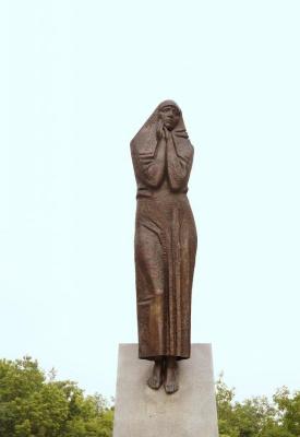 Nikolai Alexandrovich Kalinushkin. Grieving mother
