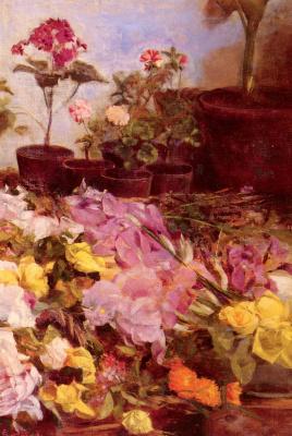 Джованни Соттокорно. Натюрморты с цветочными горшками и срезанные цветы