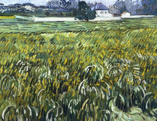 Винсент Ван Гог. Поле пшеницы и белый дом в Авьере