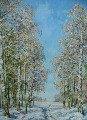 Victor Vladimirovich Kuryanov. Winter mosaic