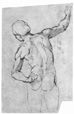 "Raphael Sanzio. Sketch for the fresco ""Dispute of the Holy sacrament."" Nude from the back"