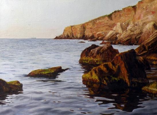 Svetlana Berdnik. Stones in water,oil on canvas,45x60,2013