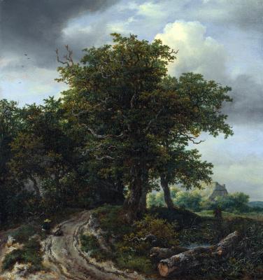 Jakob van Isaacs Ruisdael. Winding road between trees
