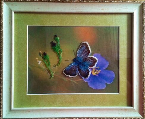 Zina Vladimirovna Parisva. Moth