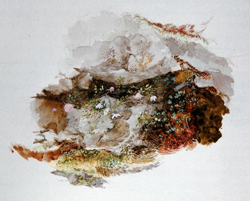 John Ruskin. A fragment of the landscape: flowers and stones