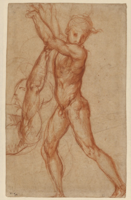 Jacopo Pontormo. Sketch of a naked boy