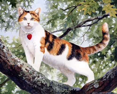 Пэрис Клейтон Вейрс. Кот на дереве