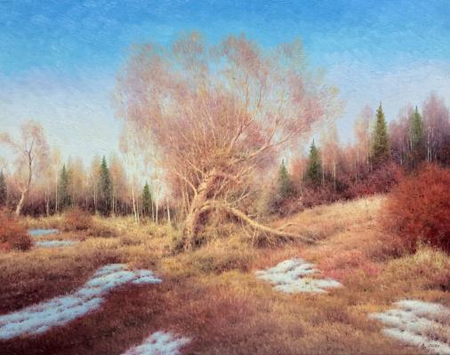 Vasily Ivanovich Gribennikov. Spring motive