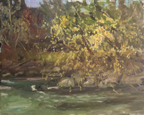 Victoria Marshakova. Forsythia at the mountain river