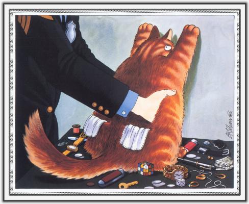 Бернард Клибан. Сны кошек 05