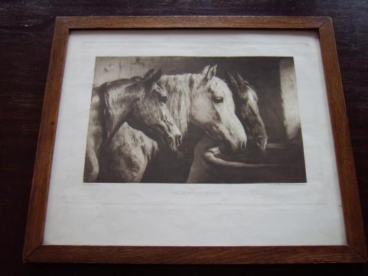 """Otto Bache. """"Three horse heads""""."""