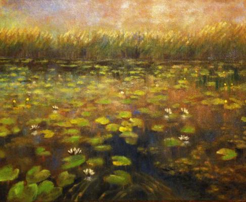 Yuri Gennadievich Piskunov. Overgrown pond