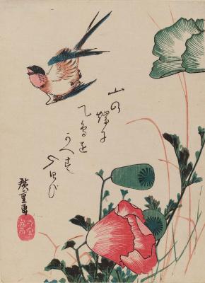 """Утагава Хиросигэ. Ласточка и мак. Серия """"Птицы и цветы"""""""