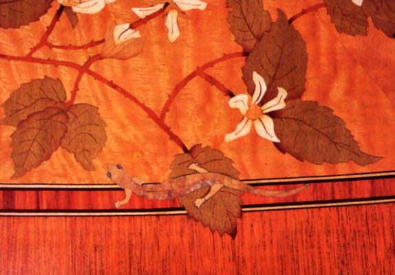 Пол Счурч. Олимпийская саламандра и ежевичный куст