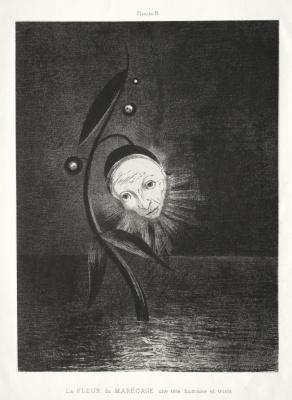 Посвящение Гойе: Болотный цветок и Человеческая и грустная голова