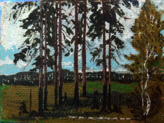 Vladimir Adamovich Ropot. Forest
