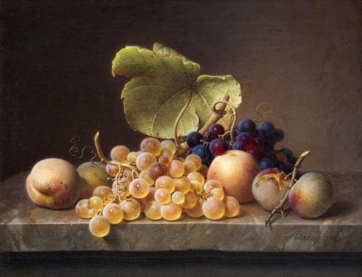 Johann Wilhelm Preyer. Still life with grapes. 1849