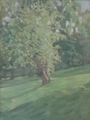 Роберт Рафаилович Фальк. Зеленое дерево (Цветущая черемуха)