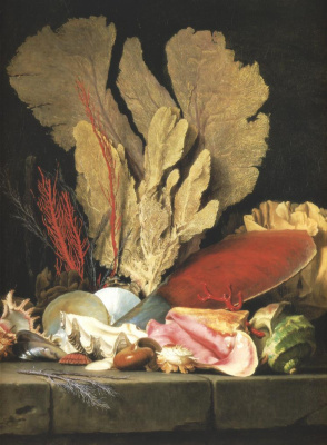 Анна Валайер-Костер. Натюрморт с пучком морских растений, раковин и кораллов