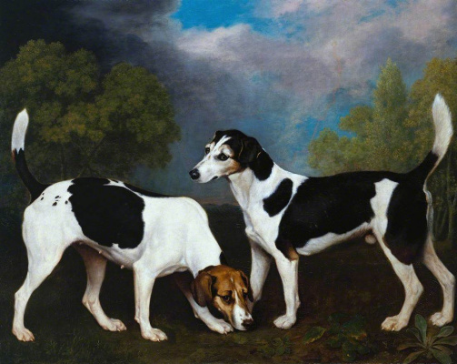 George Stubbs. Two English Foxhound