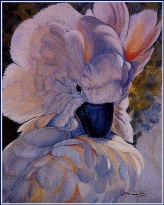 Салли Линн Дэвис. Молуккский какаду
