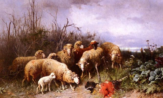 Овцы рассматривают огородное пугало