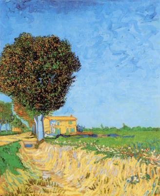 Винсент Ван Гог. Сельская улица близ Арля