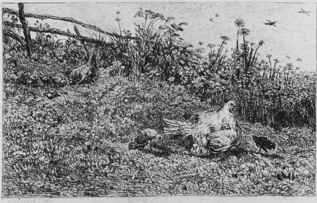 Charles-Francois Daubigny. Hen with Chicks