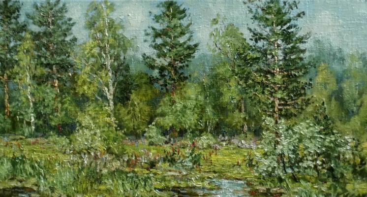 Виктор Владимирович Курьянов. Ручей в лесу