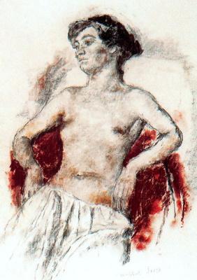 Хосеп-Мария Маллол Суасо. Портрет 11