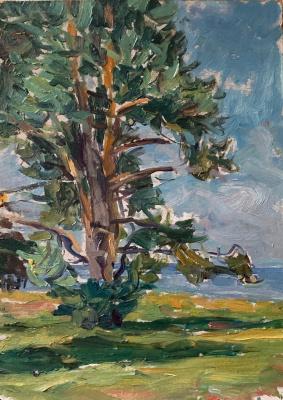 Oleg Alekseevich Dmitriev. Winter oak