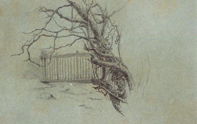 Пол Пил. Набросок дерева