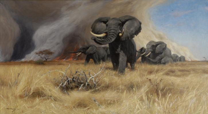 Friedrich Wilhelm Kunert. Elephants