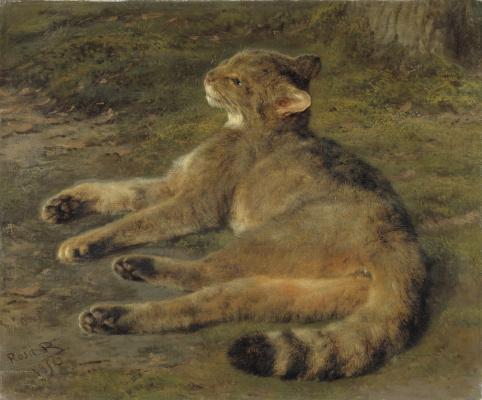 Rose Bonhur. Wild cat