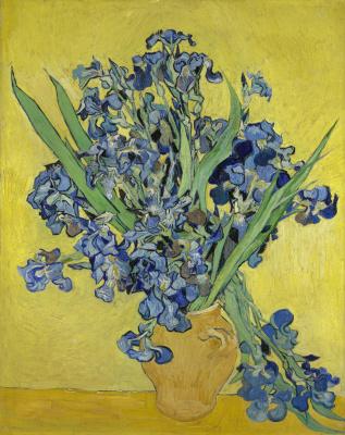 Vincent van Gogh. Bouquet of irises